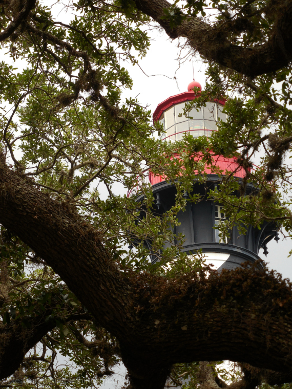 top of the St Augustine lighthouse pleasure in simple things